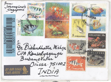 AIR MAIL COVER FROM SINGAPORE, 31.8.010