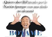 Nestor Biputeado por La Nación