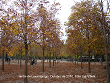 Jardim de Luxemburgo.