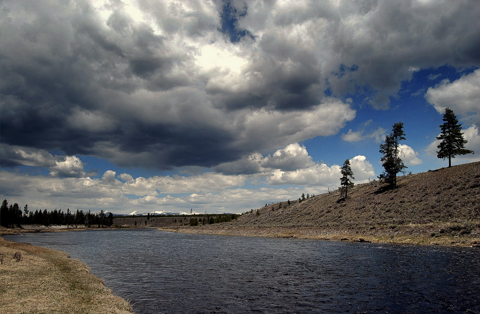 Fly fishing in yellowstone national park madison for Fishing in yellowstone