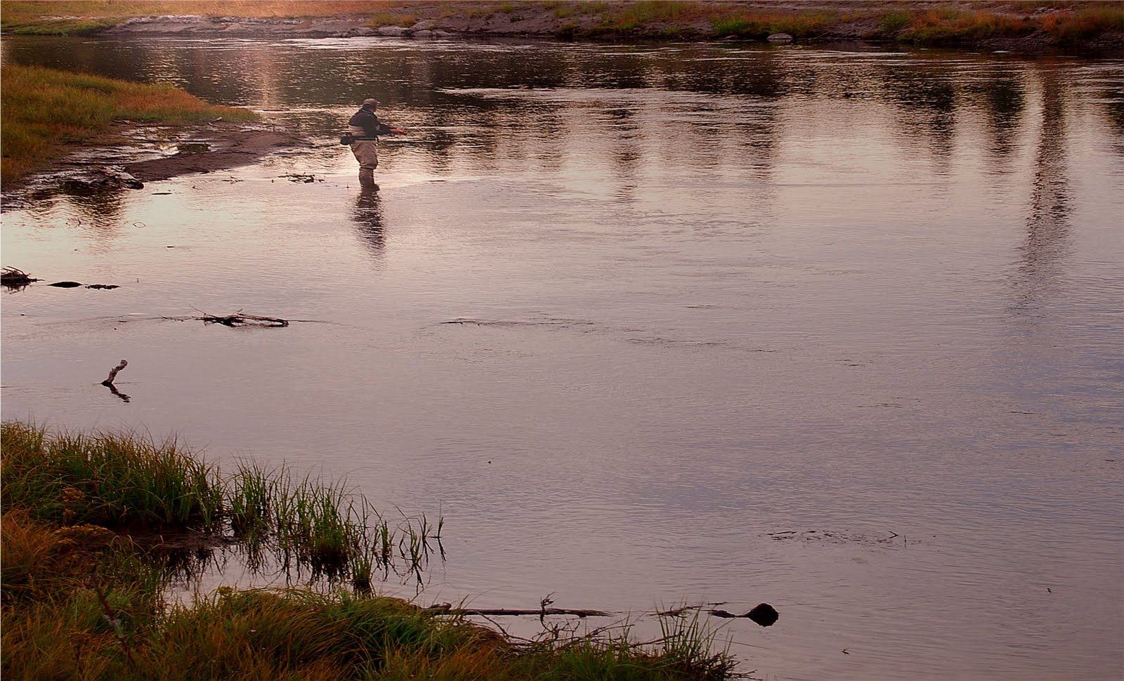 Fly fishing in yellowstone national park elsewhere for Yellowstone national park fishing