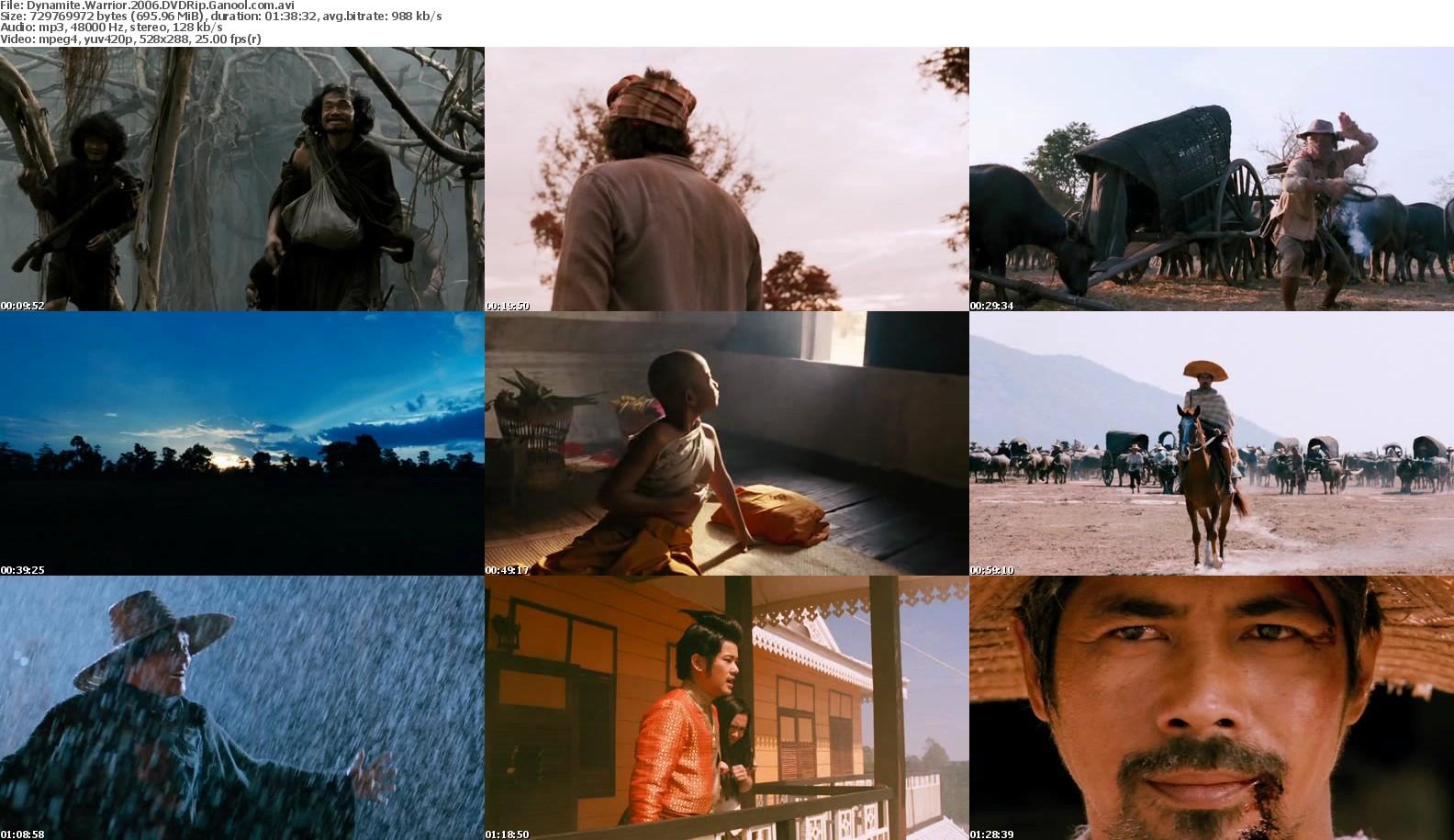 Dynamite Warrior (2006) DVDRip