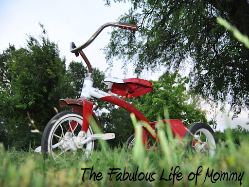 The Fabulous Life of Mommy