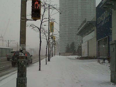 IMG00822 20101214 1532 (T.O.) Dear Winter...