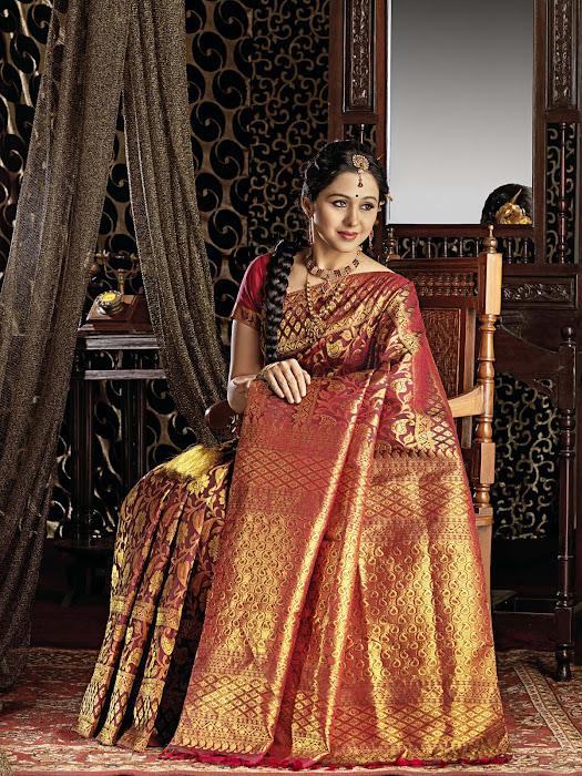 devayani in saree latest photos