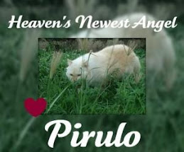 In Memoriam of Piru
