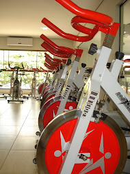 BIKE PROFITNESS SILVER