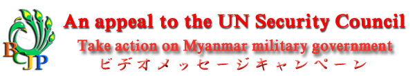 Video Message Campaign To United Nations Security Council