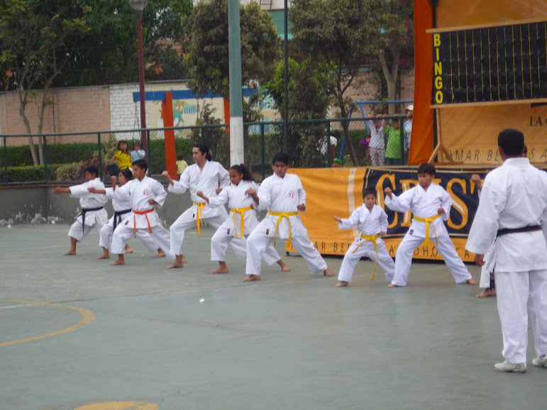 DEMOSTRACIÓN DE KARATE