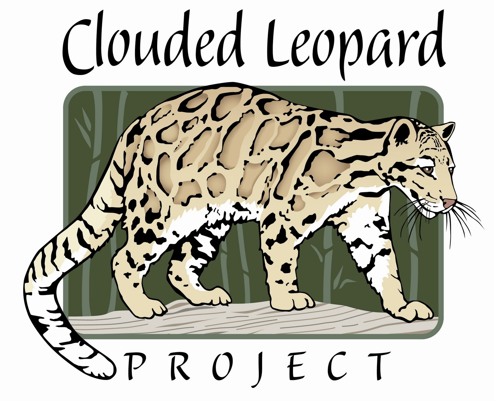 leopard conservation Posts about leopard conservation written by biosphere expeditions.