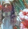 José Datrino Profeta de Gentileza