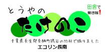 2010年度の孟宗竹の筍は終わりにしました。