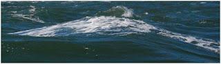 Foam residues on top of water