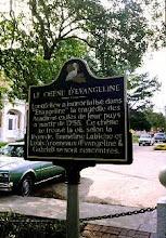 Longfellow's Evangeline Oak - St Martinville
