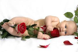 Viva a rosa...
