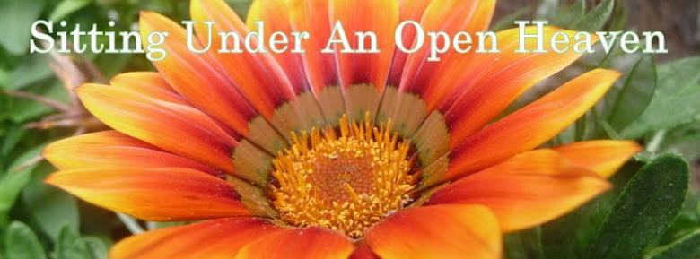 Sitting Under An Open Heaven