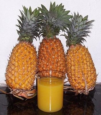 Licores Ananas_01