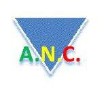 ANC - ASSOCIAÇÃO NACIONAL DOS CONTRIBUINTES FISCAIS