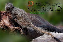 Documental para BBC Natural History Unit