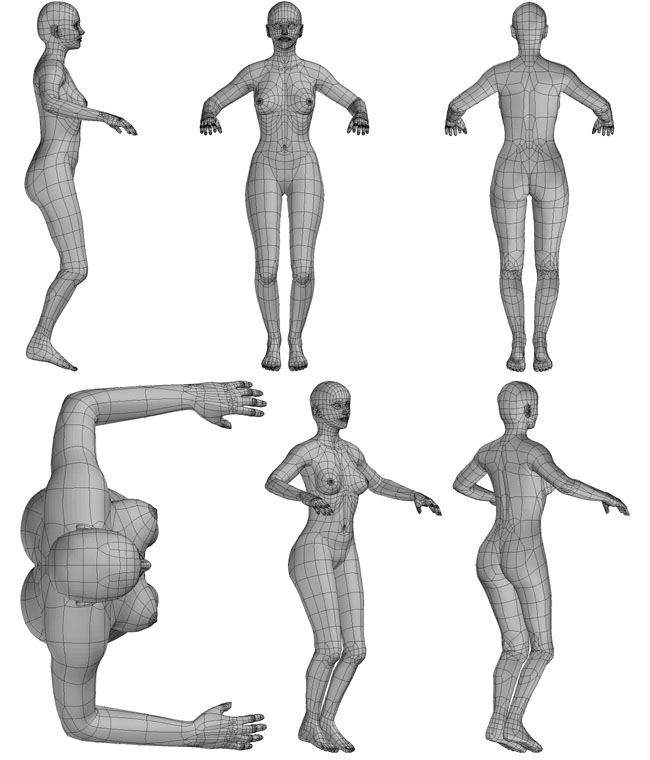 modeling the human figure