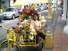 Colourfull trishaw in Melaka - Malaysia February 2008