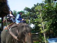 OUTSKIRTS OF BANGKOK - THAILAND DECEMBER 2008