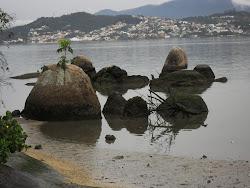 Praia do Bom Abrigo, Florianópolis