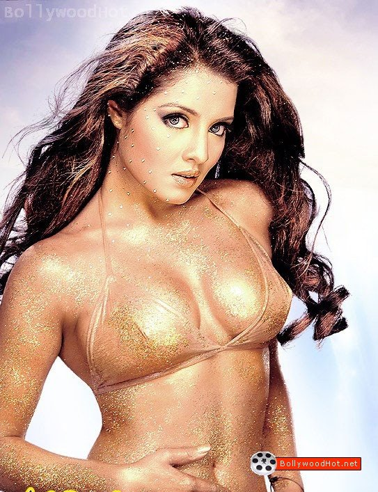 [celina-jaitley-hot-bollywood-actress-sexy-girl23.jpg]
