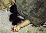 ΤΣΙΜΟΥΔΙΑ ΓΙΑ ΑΓΡΙΟ ΒΙΑΣΜΟ&ΔΟΛΟΦΟΝΙΑ ΕΛΛΗΝΙΔΑΣ ΣΤΗ ΓΚΡΑΒΑ-ΤΟ ΝΥΧΙ ΧΙΛΙΑΝΟΥ ΜΕ ΤΗ ΛΑΜΑ ΠΡΟΗΓΕΙΤΑΙ!