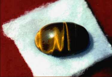 Islamic Miracle Picture - Allah's Name Appears on a Bean
