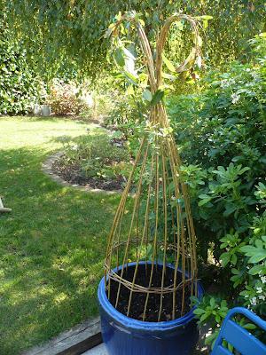 Le jardin des grandes vignes d co de saule - Quand tailler un noisetier ...