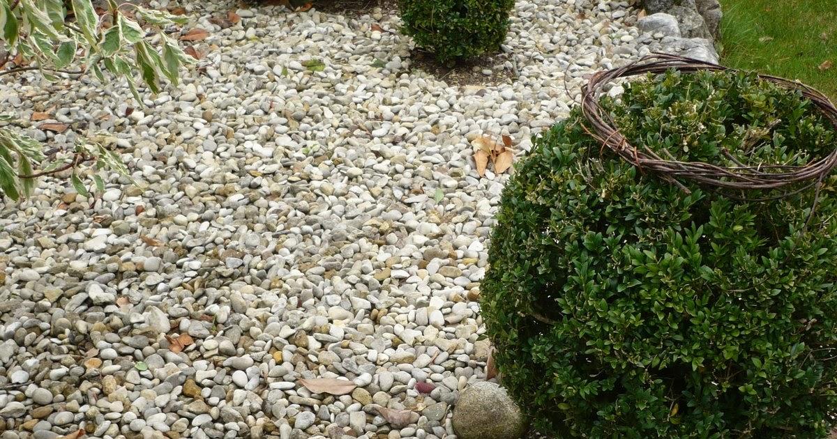 Le jardin des grandes vignes d co de saule for Au jardin des saules