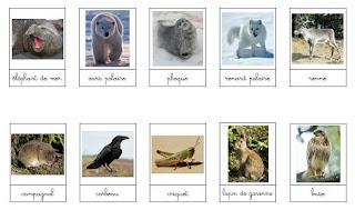 http://3.bp.blogspot.com/_SG8xjBtDzxs/TLISfMEqTGI/AAAAAAAABDM/XrXdyn1bzsM/s320/Les+animaux+et+leurs+lieux+de+vie_2.jpg