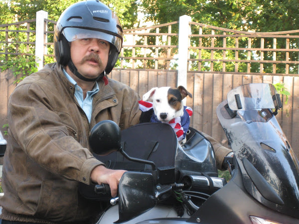 Pirate the Biker Dog
