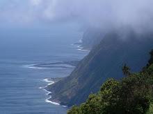 Fajã da Caldeira, S. Jorge island. A real paradise...