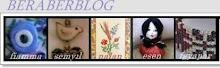 Beraberblog