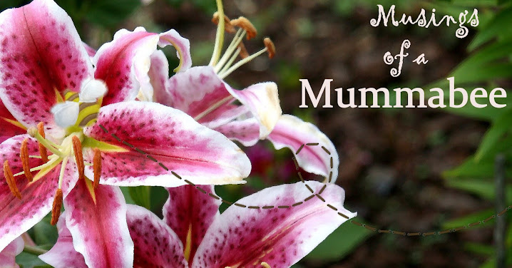 Musings of a mummabee...