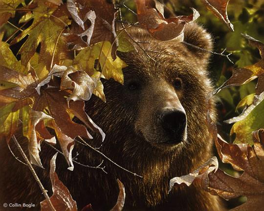 Impressionantes Pinturas de Animais Selvagens - 04