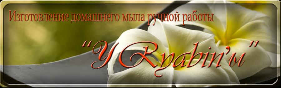 """Изготовление домашнего мыла ручной работы """"  у  Ryabin-ы"""""""