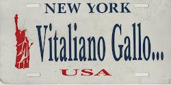 Vitaliano Gallo NY