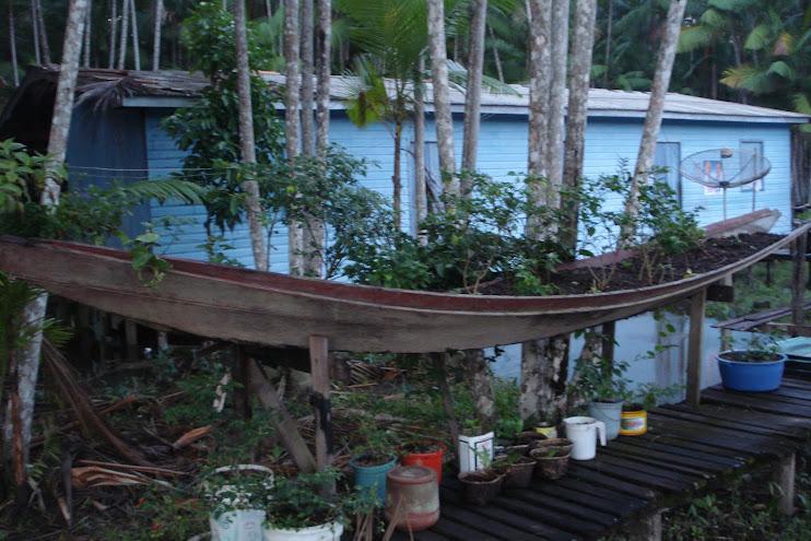 Horta Agroecológica Amazônica