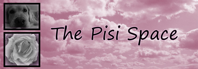 The Pisi Space