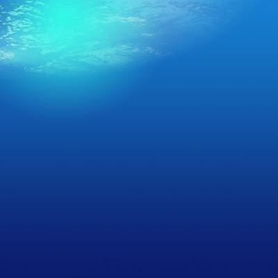 Nuansa Bawah Laut nan Teduh
