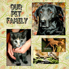 Our Pet Family