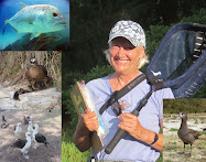 Blog Authors: Barb Mayer, with Uncle Ulua, Kahiko Ladu, Auntie Moana Laal and Edward Bfal