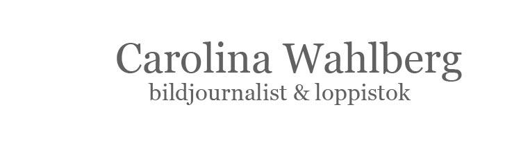 Carolina Wahlberg