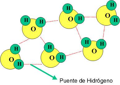 external image PUENTE+DE+HIDROGENO.jpg
