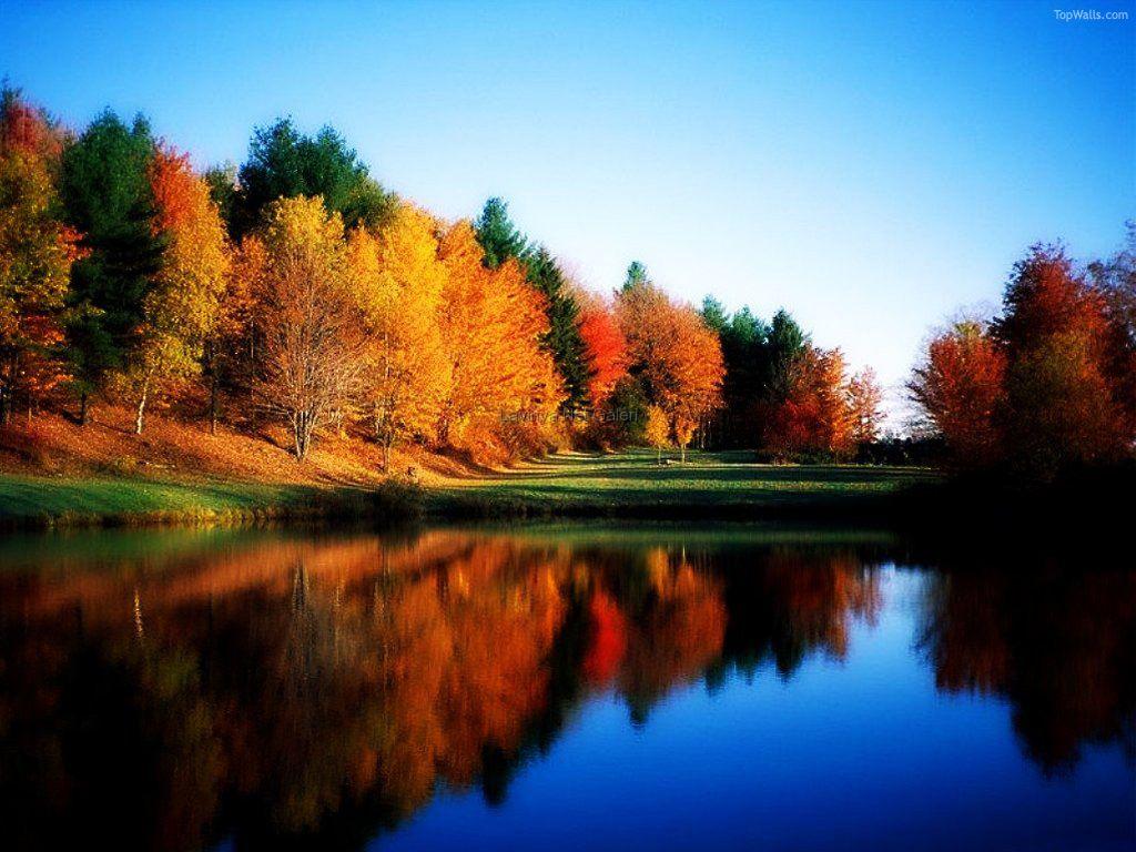 http://3.bp.blogspot.com/_SSn_NhTiEeg/SVMCZo2fXdI/AAAAAAAAAAg/7kJBzAwb6FA/S1600-R/Nature-1.jpg