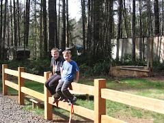 Sturdy new fence!