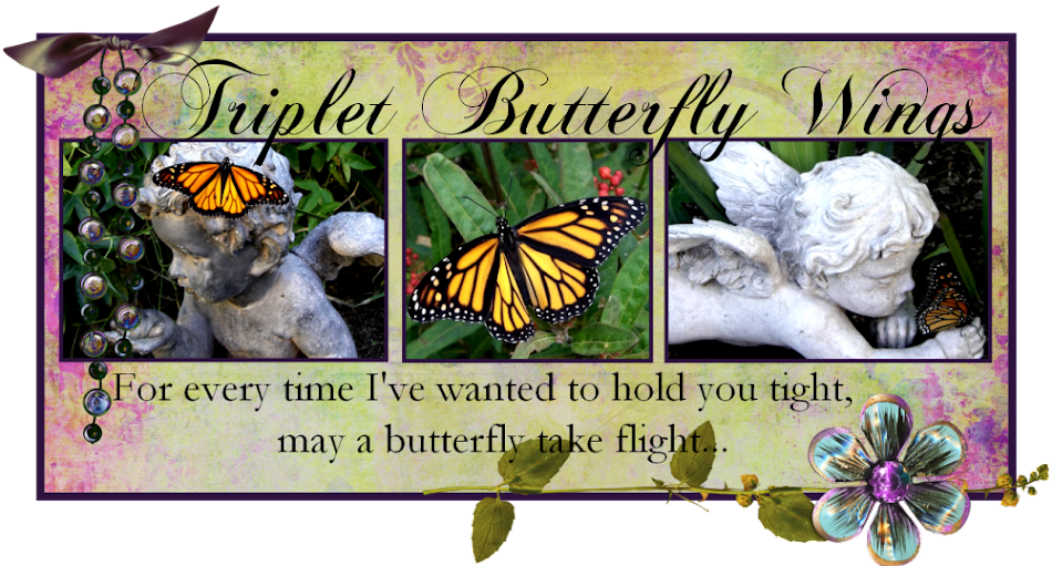 Triplet Butterfly Wings